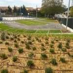 Proyecto - Aparcamiento Sant Fost de Campsentelles